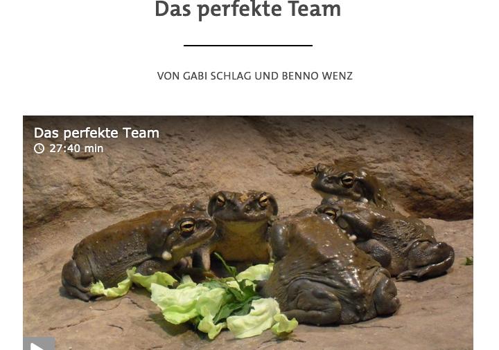 """Prof. Dr. Kauffeld zum Thema """"das <strong>perfekte Team</strong>"""": Jetzt reinhören!"""